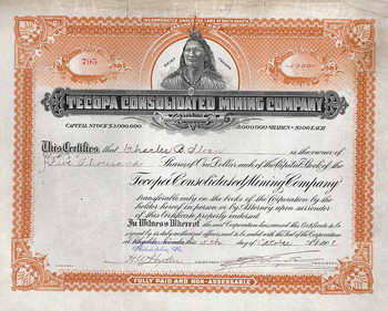 Tecopa Consolidated Mining Co.